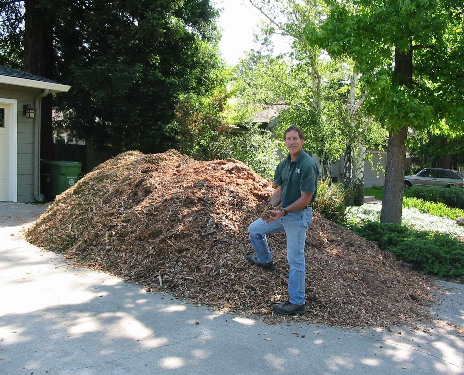 Free Wood Chips Traverso Tree Service