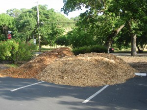 Wood Chips 005